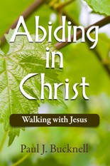 Description and purchase Abiding in Jesus