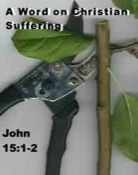 Pruning and suffering for Christians
